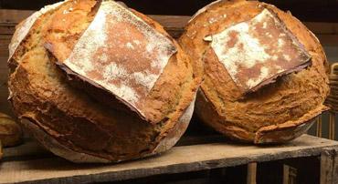 pain de tranchoir